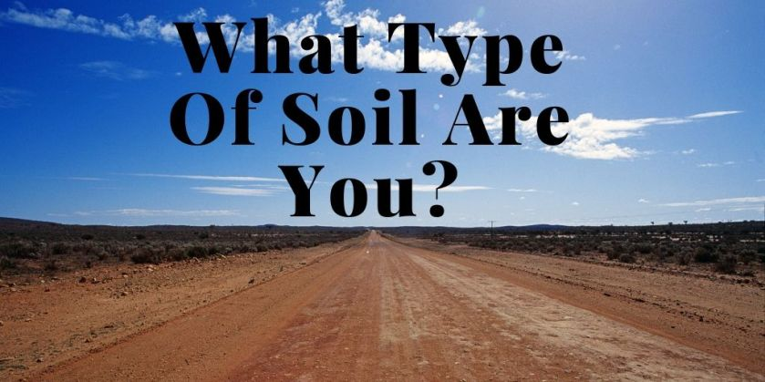 What Type Of Soil Are You_